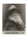 Walt Whitman  American Poet