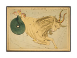 Capricornus Constellation  Zodiac Sign  1825