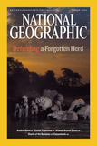 Cover of the March  2007 Issue of National Geographic Magazine