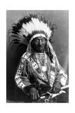 Red Cloud  Oglala Lakota Indian Chief