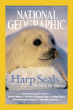 Cover of the March  2004 National Geographic Magazine