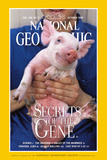 Cover of the October  1999 Issue of National Geographic Magazine