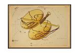 Libra Constellation  Zodiac Sign  1825