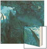 Sleeping Sharks in Cave  1975