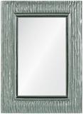 Scott Mirror