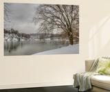 Winter Along the Potomac River
