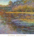 Sunlit Pond 2
