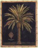 Caribbean Palm I With Bamboo Border