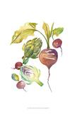Harvest Medley VI