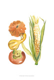 Harvest Medley V