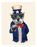 Uncle Sam (Pets Rock)