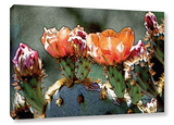 Dessert Bloom Gallery Wrapped Canvas