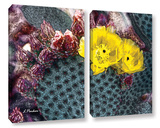 Yellow Desert Blooms 2 Piece Gallery Wrapped Canvas Set