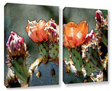 Dessert Bloom 2 Piece Gallery Wrapped Canvas Set
