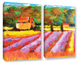 Lavendar Fields 2 Piece Gallery Wrapped Canvas Set