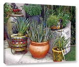 Southwest Potted Garden Gallery Wrapped Canvas