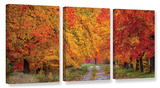 Fall's Path 3 Piece Gallery Wrapped Canvas Set