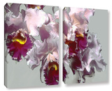 Abstract Orchid 2 Piece Gallery Wrapped Canvas Set