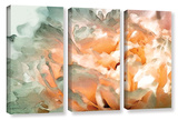 Abstract Carnation 3 Piece Gallery Wrapped Canvas Set