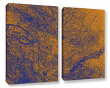Entangled 2 Piece Gallery Wrapped Canvas Set