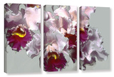 Abstract Orchid 3 Piece Gallery Wrapped Canvas Set