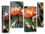Dessert Bloom 4 Piece Gallery Wrapped Canvas Set