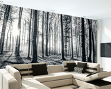 Black and White Forest Wall Mural