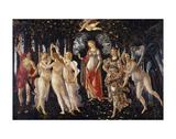 La Primavera  1481-1482