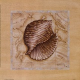 Sea Treasures I