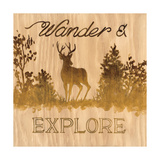 Wander and Explore