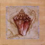 Sea Treasures III