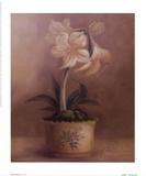 Olivia's Flowers IV
