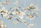 Kimono with Birds I