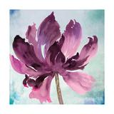 Tye Dye Floral I