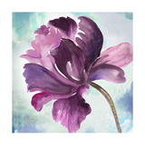 Tye Dye Floral II