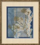 Santorini Floral I