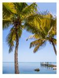 Florida Keys Lovely Oceanside Reproduction d'art par Melanie Viola