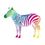Zebra Color (Cmyk)