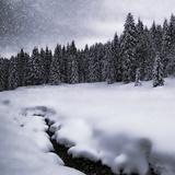 Bavarian Winter'S Tale VII Reproduction d'art par Melanie Viola