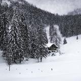 Bavarian Winter'S Tale IX Reproduction d'art par Melanie Viola