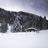 Bavarian Winter'S Tale VIII Reproduction d'art par Melanie Viola