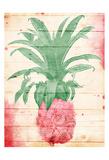 Pink Pineapple Henna