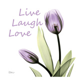 Purple Tulips Live Laugh Love