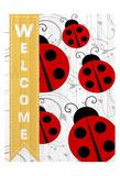 Welcome Ladybug