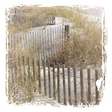 Fence By The Beach