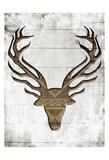 White Wood Dear Reproduction d'art par Jace Grey