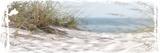 Coastal Photography 4