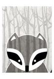Woodland Racoon