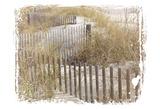Coastal Photography 1