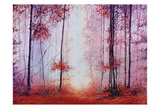 Red Foggy Forest